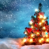 Британці вивели формулу ідеальної новорічної ялинки