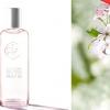 Квітуча вишня в новому ароматі Ів Роше