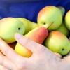 Природний фруктовий антибіотик