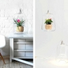 Геніальні лампи для кімнатних рослин