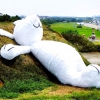 Гігантський місячний кролик