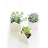 Глиняні горщики для квітів своїми руками
