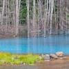 Блакитний ставок хоккайдо