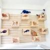 Ігрова стінка для котів і кішок