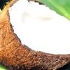 Цікаві факти про кокосі