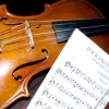 Як влаштована скрипка? Скільки на ній струн? І інші цікаві факти про скрипці ...
