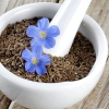 Льон: властивості, користь і лікувальне застосування