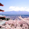 Незвичайні японські звички
