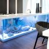 Величезний акваріум, вбудований в кухонний острів