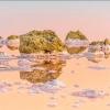 Ширяють острова Кояського озера