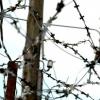 Пісні політв'язнів: від Варшав'янки до Колими