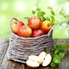 Просте яблуко може стати молодильні