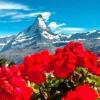 Найкрасивіша гірська вершина в світі