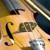 Секрет геніальних скрипок Страдіварі