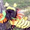 Собачий карнавал в Новосибірську