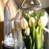 Вигонка квітів або живі квіточки до новорічних свят