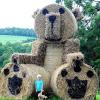 Найбільший у світі ведмедик!