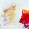 Солодкі картини або морозиво замість фарб