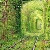 Тунель кохання на Україні!