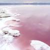 Чудеса природи: рожеві озера і пляжі
